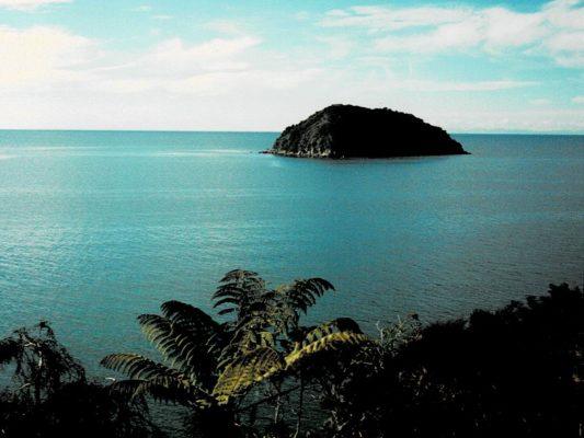 ニュージーランドの海岸の風景