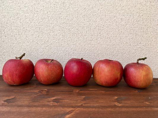 リンゴの集合写真
