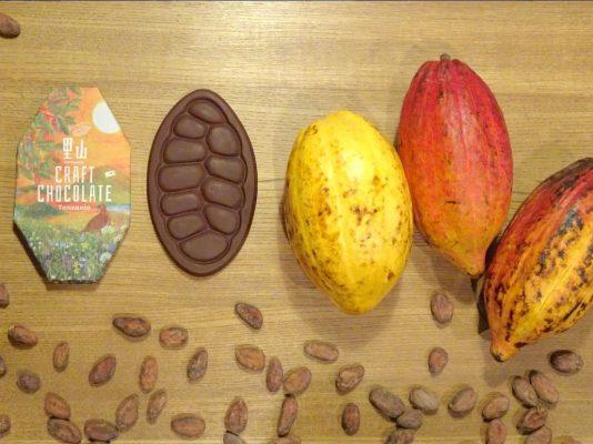 チョコレートとカカオ