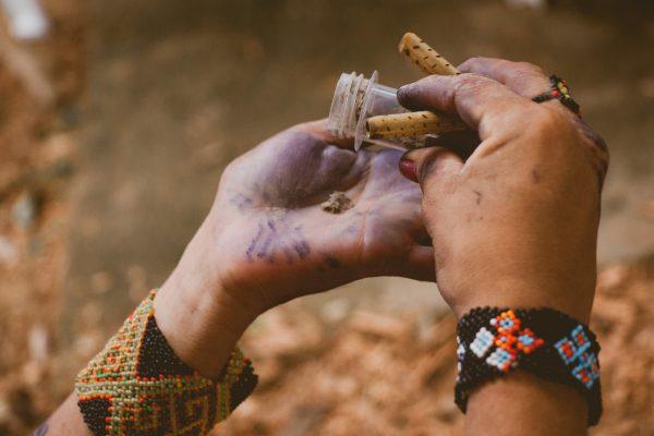 古来からの薬を手に取る先住民族の手元
